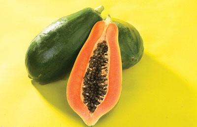 农科院专家:市面上绝大多数木瓜为转基因品种