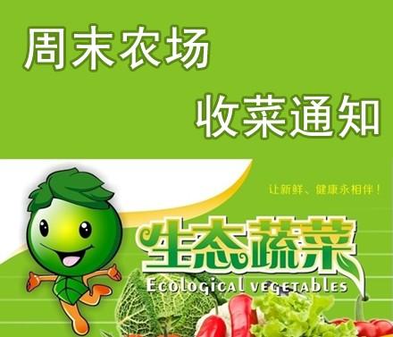 周末农场收菜通知20120601