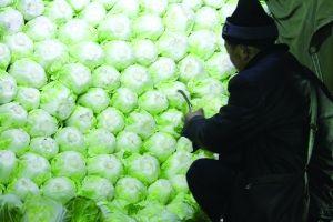 教你如何分辨喷了甲醛的蔬菜