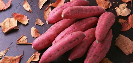 又到吃红薯的季节了,常吃红薯的13个好处