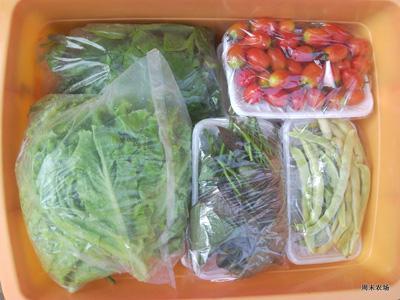 周末农场20110722收菜通知