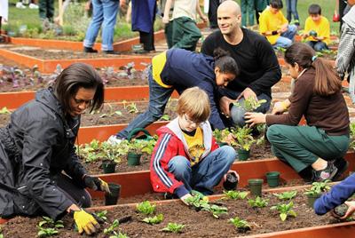 美国和韩国联合研究发现园艺最帮孩子减肥