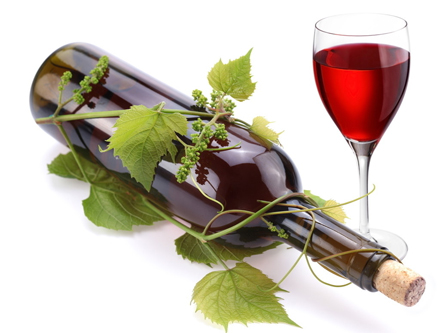 教你如何辨别葡萄酒